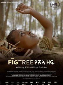 El árbol de Higo