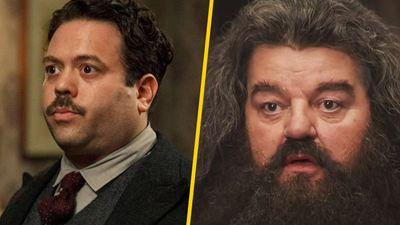 'Animales fantásticos 3': Dan Fogler quiere que Jacob Kowalski  sea niñera de Hagrid
