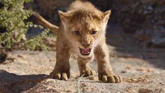 'El rey león' ruge a sus rivales en su segundo fin de semana