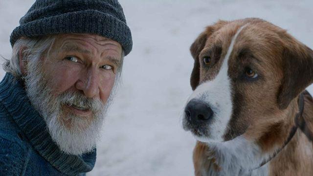 'El llamado salvaje': Así luce el perro sin los efectos visuales