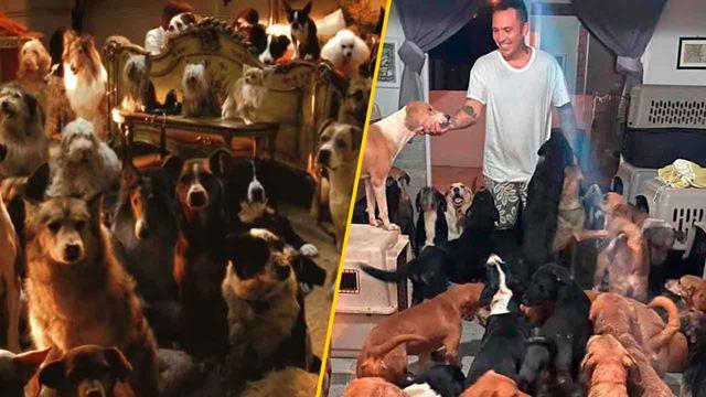 Joven refugió a cientos de animales del huracán Delta y su heroísmo nos recordó a 'Hotel para perros'