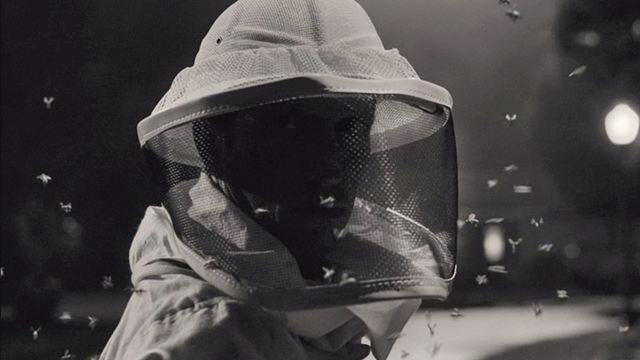 'WandaVision': ¿Quién es el misterioso hombre de las abejas en la serie de Disney+?