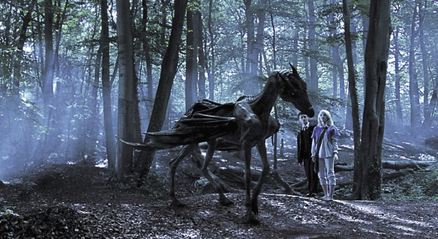 Thestral