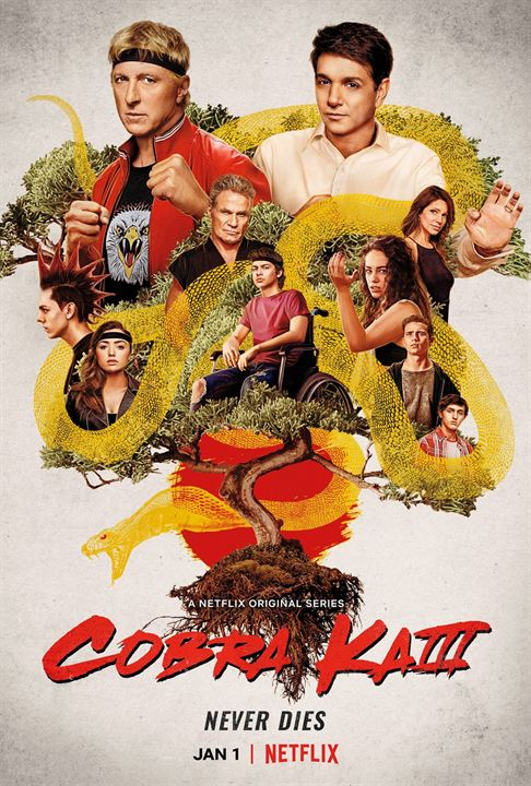 Cobra Kai : Cartel